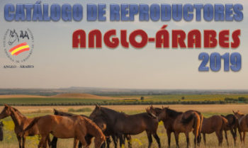 catalogo reproductores anglo-arabes 2019