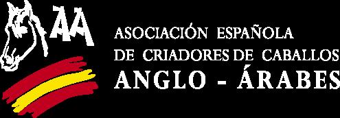 logo aeccaa