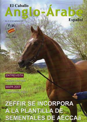 revista caballlo anglo-arabe 33