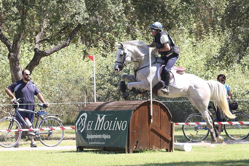 Pruebas de Selección de Caballos Jóvenes de Concurso Completo de Equitación