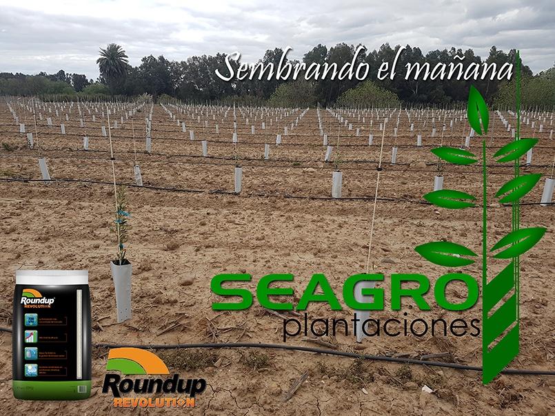Seagro rouncup revolution
