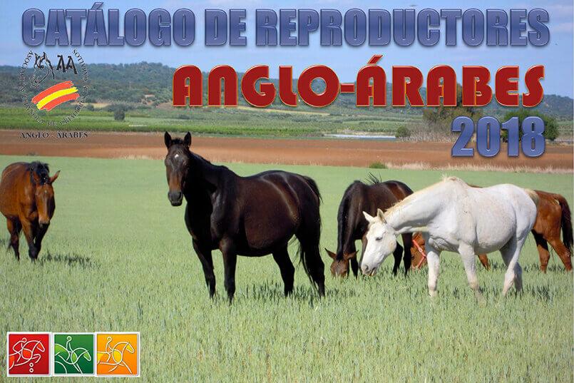 catalogo de reproductores anglo-arabes