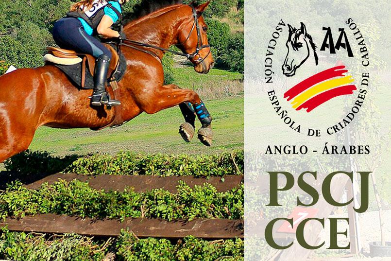 PSCJ de CCE