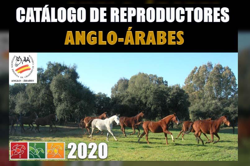 Catálogo dereproductores AÁ